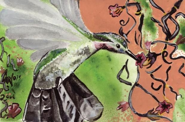 carlo-ray-martinez-humming-bird