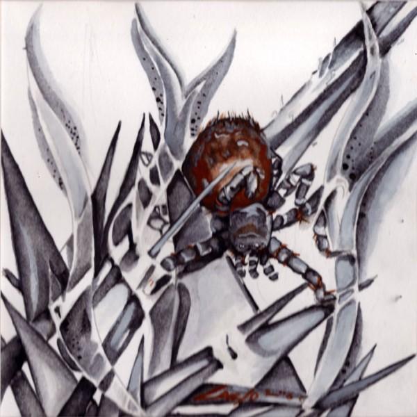 carlo-ray-martinez-spider